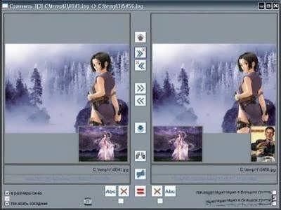 Imagedupeless Portable - фото 10